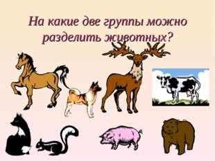 На какие две группы можно разделить животных?