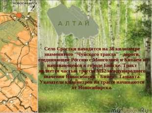 """Село Сростки находится на 36 километре знаменитого """"Чуйского тракта"""" - дорог"""