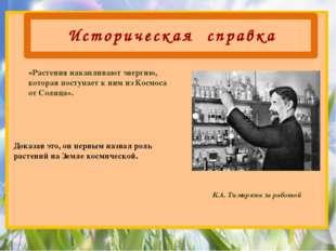 Историческая справка К.А. Тимирязев за работой Доказав это, он первым назвал