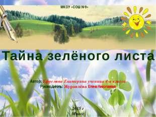 Автор: Ефремова Екатерина ученица 4-в класса Руководитель: Журавлёва Елена Н