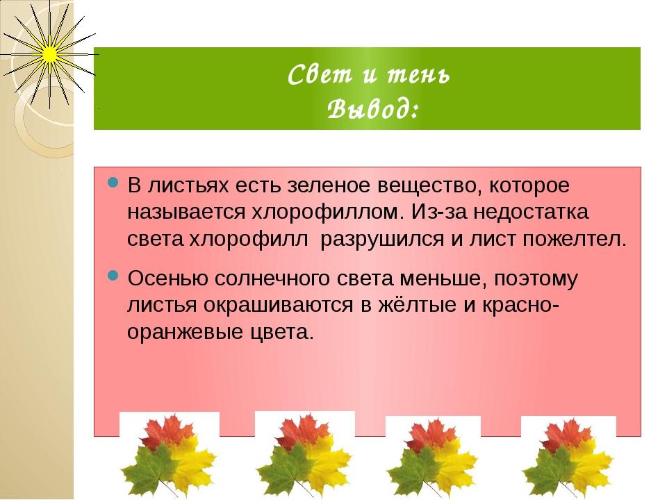 Свет и тень Вывод: В листьях есть зеленое вещество, которое называется хлороф...