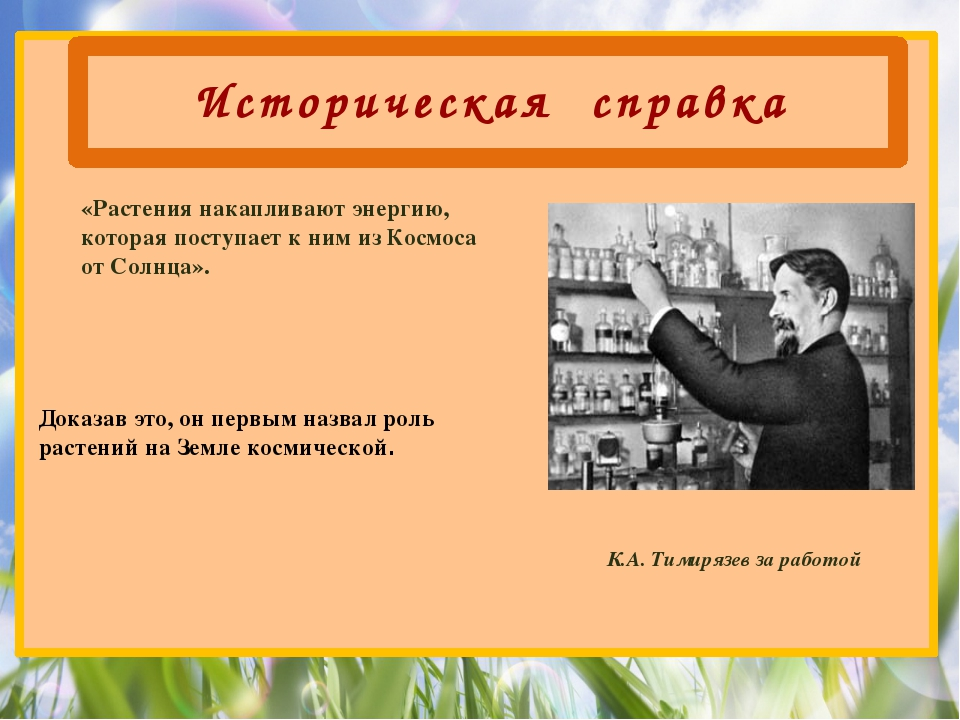 Историческая справка К.А. Тимирязев за работой Доказав это, он первым назвал...