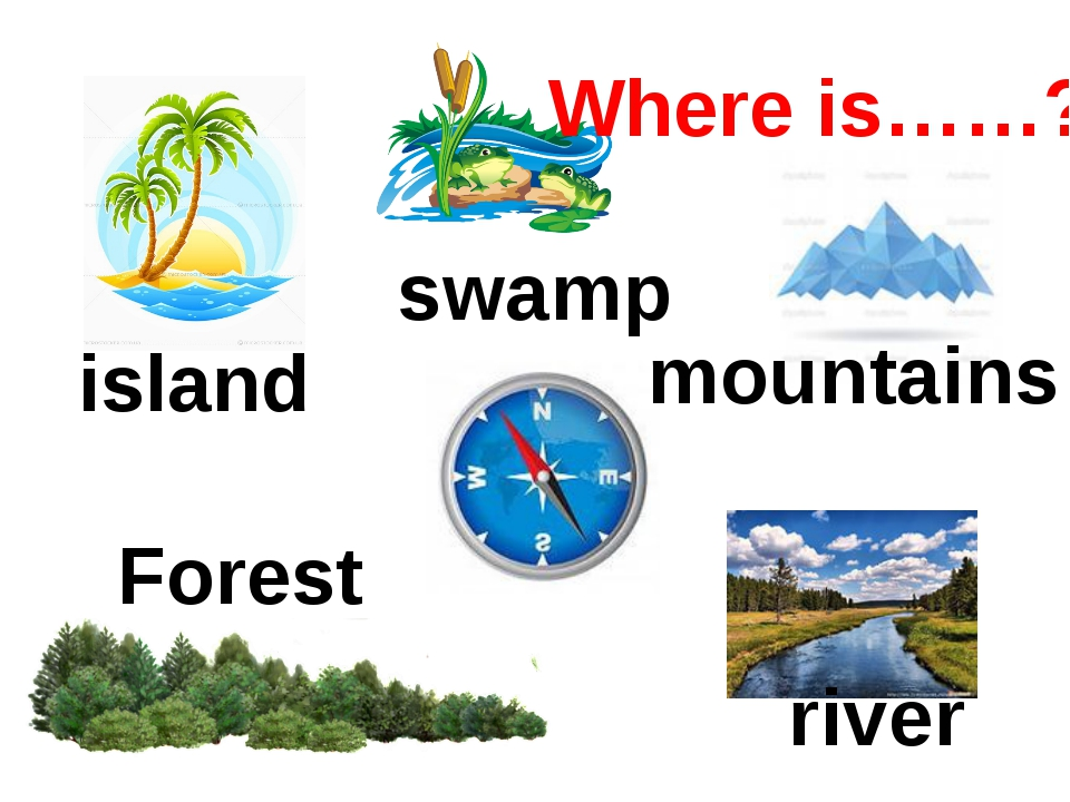 Forest swamp island river mountains Where is……?