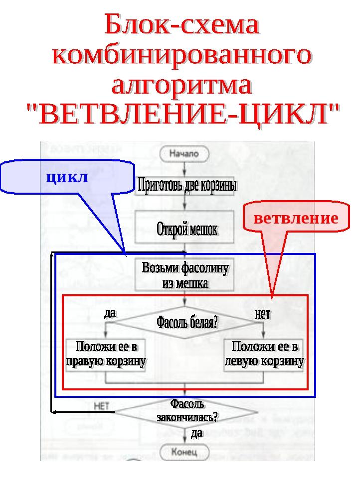 ветвление цикл