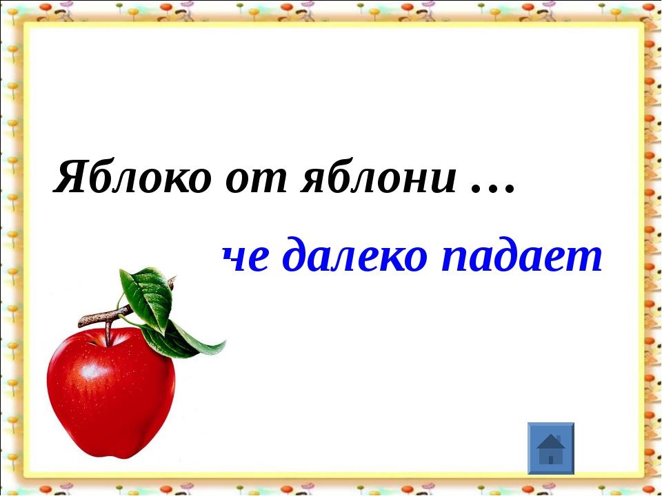 Яблоко от яблони … не далеко падает