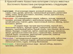В Красной книге Казахстана категории статуса животных Восточного Казахстана р