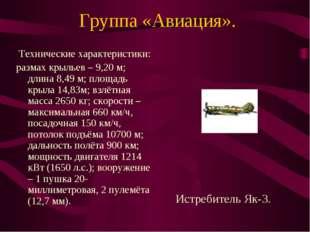 Группа «Авиация». Технические характеристики: размах крыльев – 9,20 м; длина