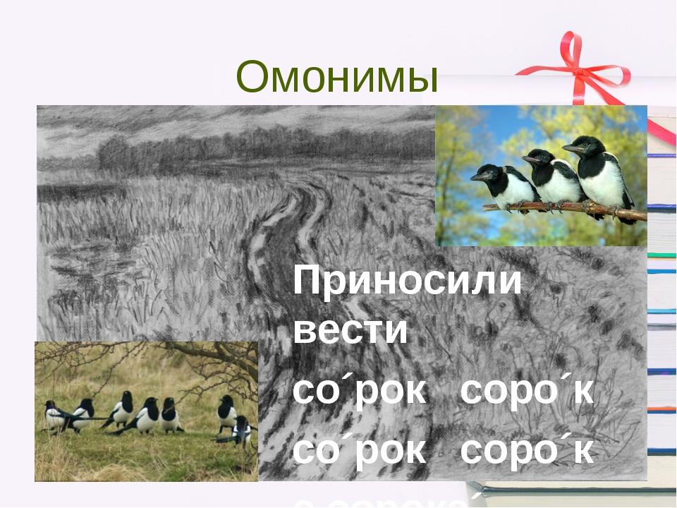 Омонимы Приносили вести со´рок соро´к со´рок соро´к с сорока´ дорог….