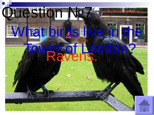 Question №7 What birds live in the Tower of London? Ravens.