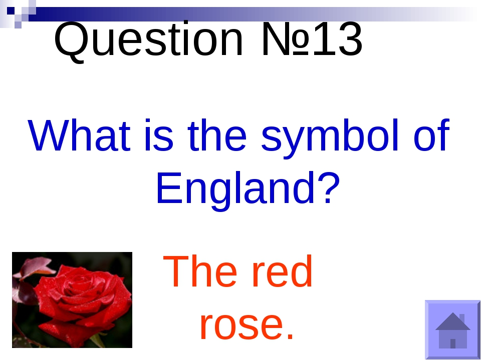Question №13 What is the symbol of England? The red rose.