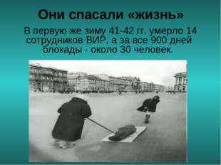 Они спасали «жизнь» В первую же зиму 41-42 гг. умерло 14 сотрудников ВИР, а з