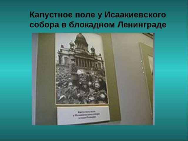 Капустное поле у Исаакиевского собора в блокадном Ленинграде