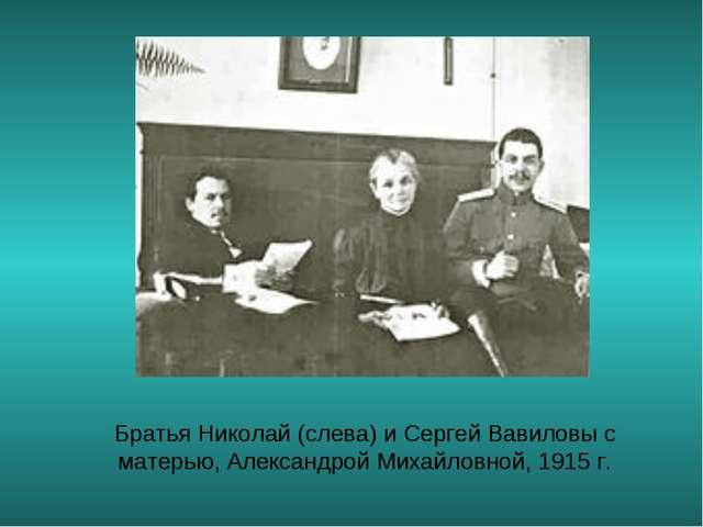 Братья Николай (слева) и Сергей Вавиловы с матерью, Александрой Михайловной,...