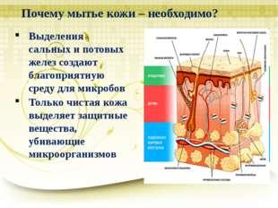 Почему мытье кожи – необходимо? Выделения сальных и потовых желез создают бла