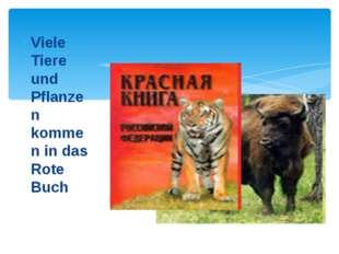Viele Tiere und Pflanzen kommen in das Rote Buch