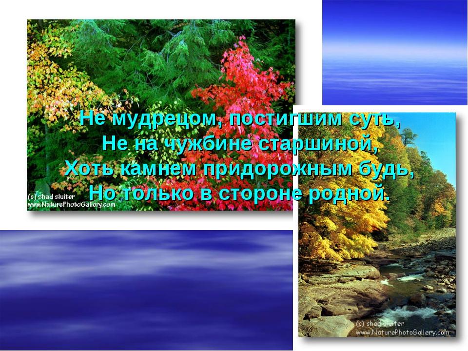 Не мудрецом, постигшим суть, Не на чужбине старшиной, Хоть камнем придорожным...