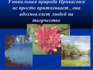 Уникальная природа Прикаспия не просто притягивает , она вдохновляет людей на