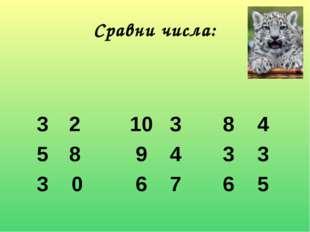Сравни числа: 210 38 4 8 9 43 3 3 0 6 76 5