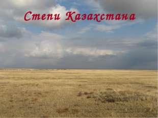 Степи Казахстана