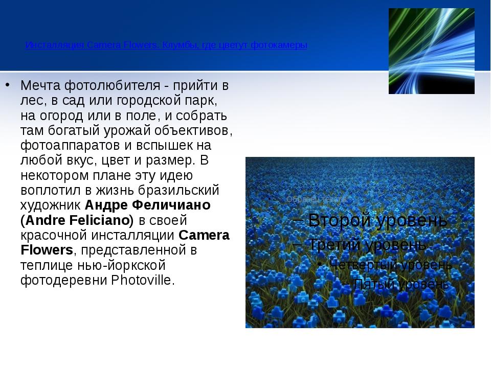 Инсталляция Camera Flowers. Клумбы, где цветут фотокамеры  Мечта фотолюби...