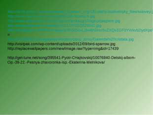 http://birds-photo.com/temp/saved_bizslovo_org/130-ptahy-budivelnyky_files/so
