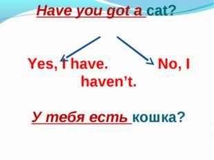 Have you got a cat? Yes, I have. No, I haven't. У тебя есть кошка?