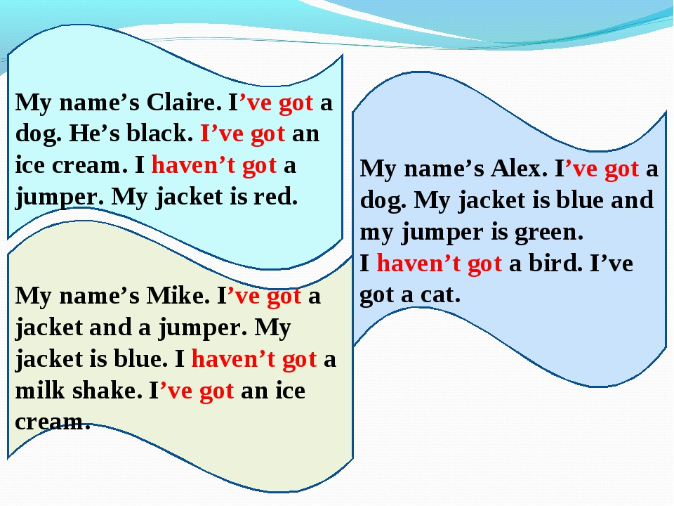 My name's Alex. I've got a dog. My jacket is blue and my jumper is green. I h...