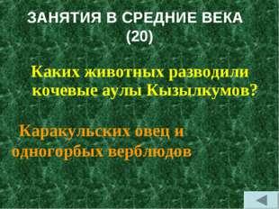 ЗАНЯТИЯ В СРЕДНИЕ ВЕКА (20) Каких животных разводили кочевые аулы Кызылкумов?