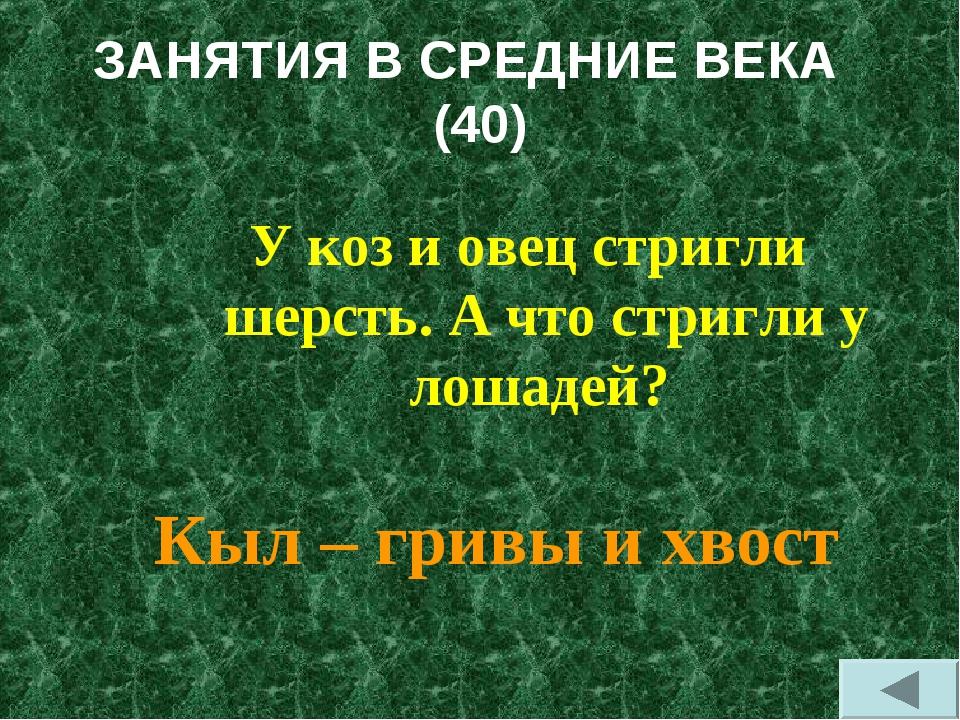 ЗАНЯТИЯ В СРЕДНИЕ ВЕКА (40) У коз и овец стригли шерсть. А что стригли у лоша...