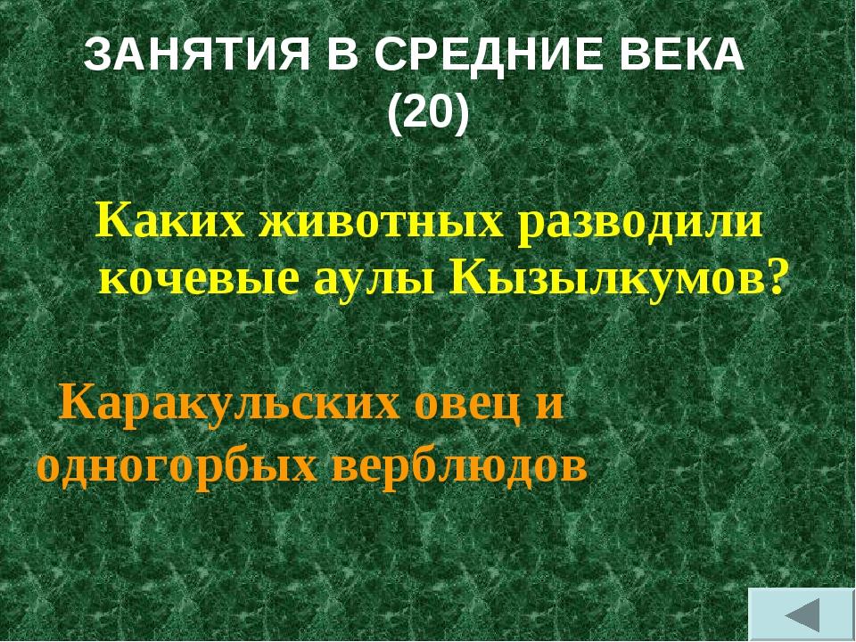 ЗАНЯТИЯ В СРЕДНИЕ ВЕКА (20) Каких животных разводили кочевые аулы Кызылкумов?...