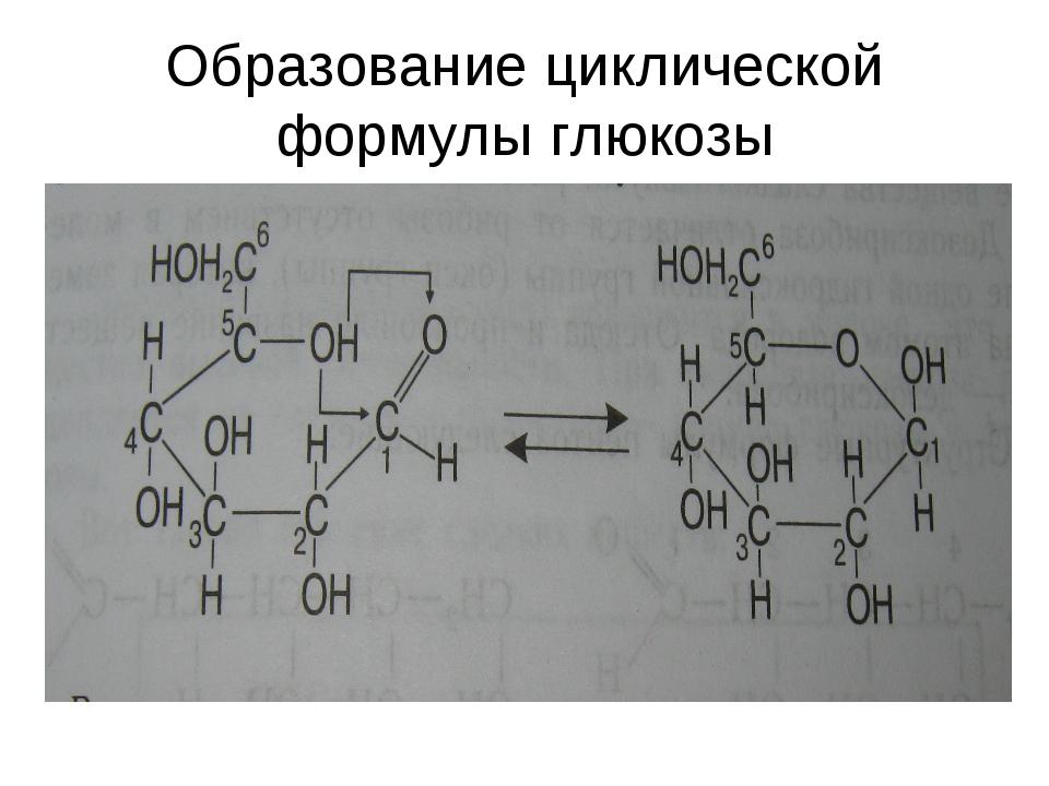 Образование циклической формулы глюкозы