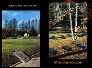 Одна из братских могил Могилы воинов http://www.deti-66.ru/ Всероссийский инт