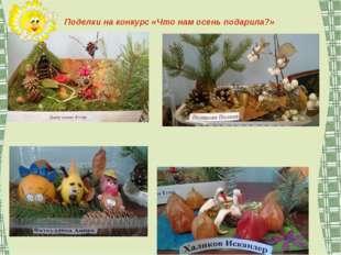 Поделки на конкурс «Что нам осень подарила?»
