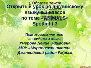 Открытый урок по английскому языку в 3 классе по теме «ANIMALS» Spotlight 3 П
