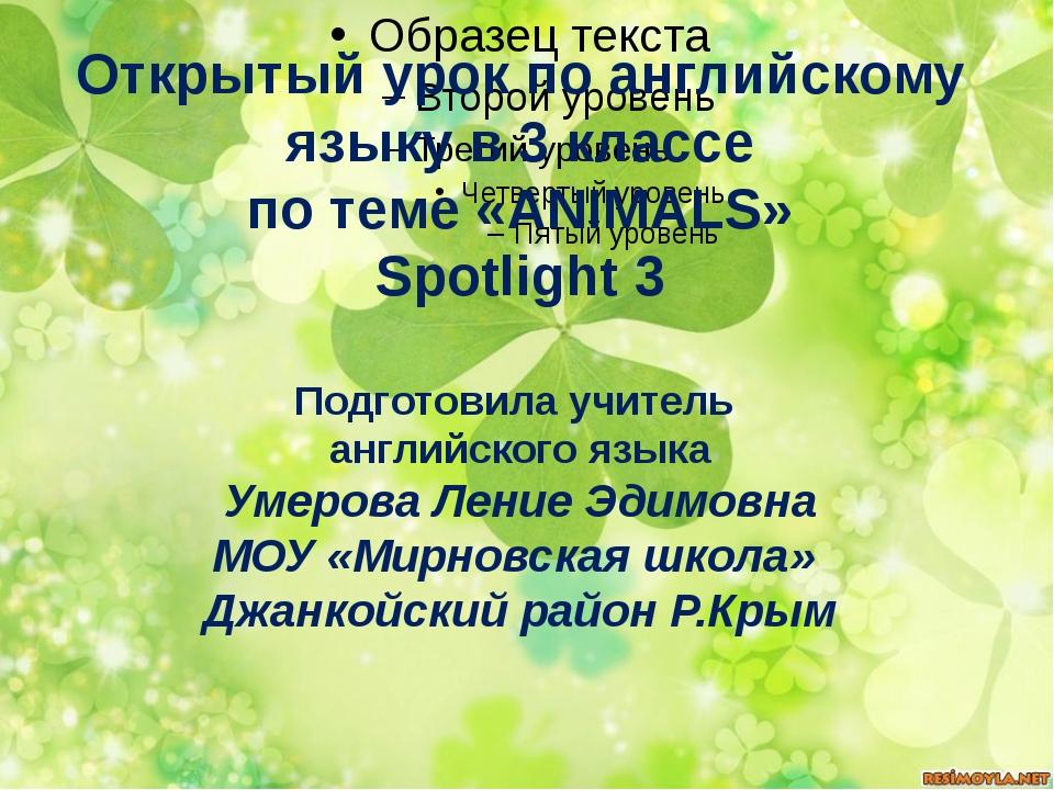 Открытый урок по английскому языку в 3 классе по теме «ANIMALS» Spotlight 3 П...