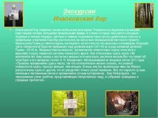 Экскурсии Ичалковский бор Ичалковский бор знаменит своим необычным рельефом.