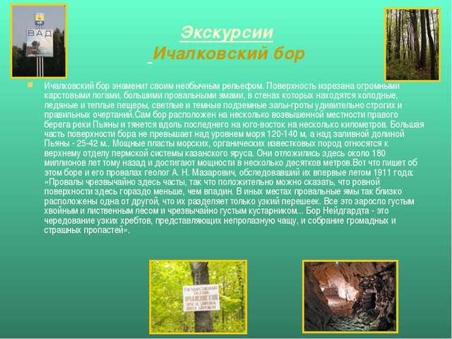Экскурсии Ичалковский бор Ичалковский бор знаменит своим необычным рельефом....