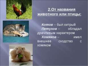 2.От названия животного или птицы: Котов– был хитрый Петухов– обладал драчл