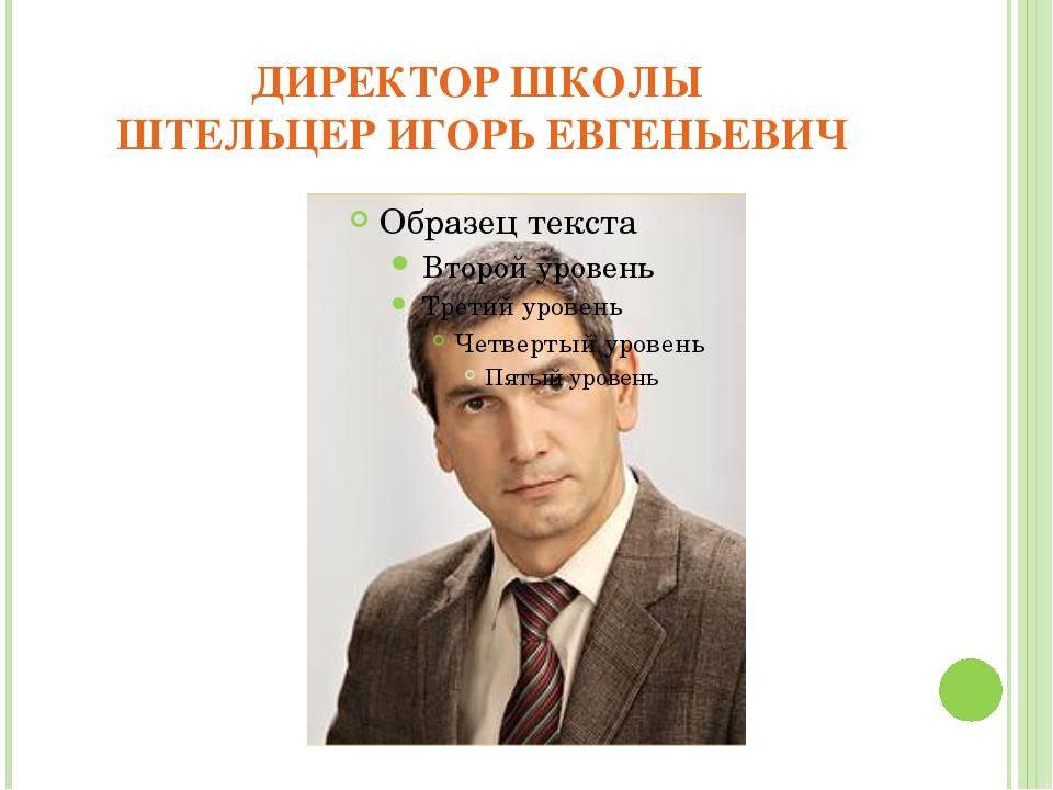 ДИРЕКТОР ШКОЛЫ ШТЕЛЬЦЕР ИГОРЬ ЕВГЕНЬЕВИЧ