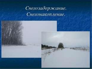 Снегозадержание. Снегонакопление.
