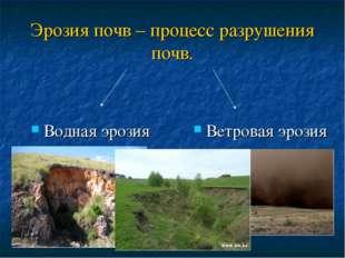 Эрозия почв – процесс разрушения почв. Водная эрозия Ветровая эрозия
