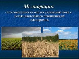 Мелиорация - это совокупность мер по улучшению почв с целью длительного повыш
