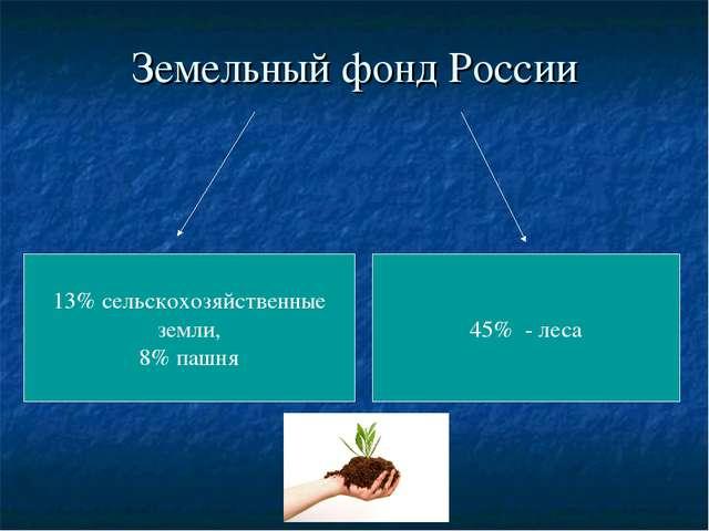 Земельный фонд России 13% сельскохозяйственные земли, 8% пашня 45% - леса