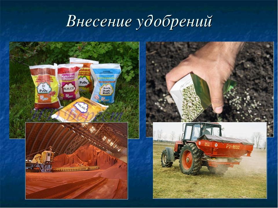 Охрана почвы картинка