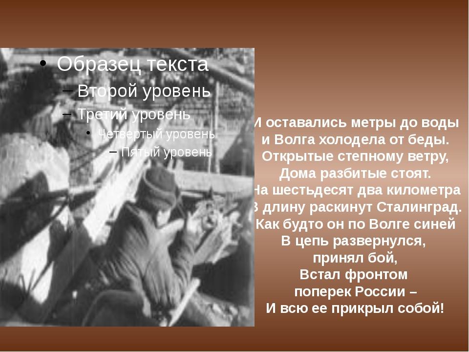 И оставались метры до воды и Волга холодела от беды. Открытые степному ветру,...