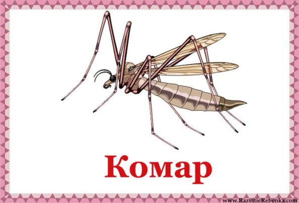 http://img1.liveinternet.ru/images/attach/c/7/94/688/94688555_Komar.jpg
