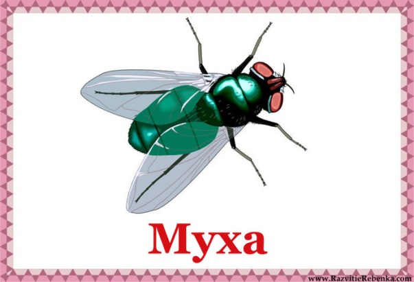 http://img0.liveinternet.ru/images/attach/c/7/94/688/94688550_large____3_.jpg