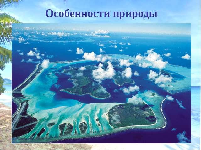 Кокосовая пальма Распространение происходит морским путем по островам Тихого...
