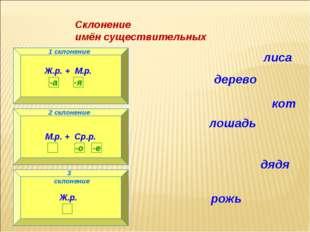 Склонение имён существительных 1 склонение Ж.р. + М.р. 2 склонение М.р. + Ср.