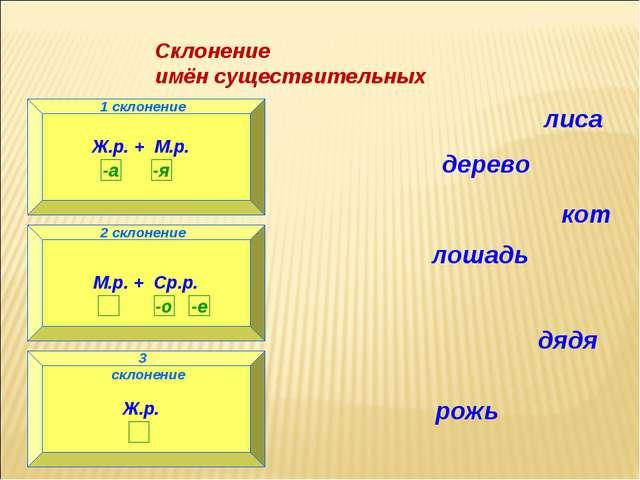 Склонение имён существительных 1 склонение Ж.р. + М.р. 2 склонение М.р. + Ср....
